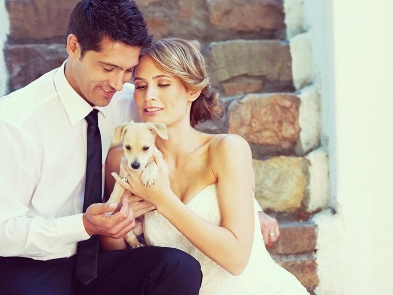 ペットだって、大切な家族です。そんなワンちゃんや猫ちゃんと一緒に結婚式を挙げたい!という思いを抱いている方も多いのではないでしょうか。