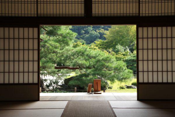 In Kyoto Japan.