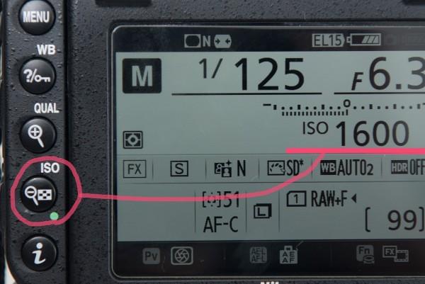 F3C65781-96F5-4B95-8A0C-0A5BFF7894A4